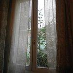 finestra che affaccia sul giardino