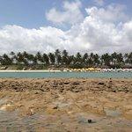 Vista do recife de corais. Muro alto de frente