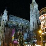 Stephansdom im Advent