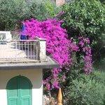 View from balcony at San Giorgio
