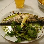 Mackerel with chips and leaf salad