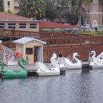 Padleboat area