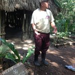 Willy in front of the Mayan hut he built and describing a medicinal use of the plant at his feet