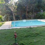 Well maintained pool