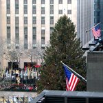 View of the CHRISTmas tree from The Terrace