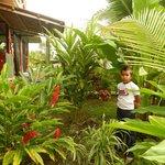 jardin preciosa