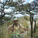 Mt. Longonot - excursion del día