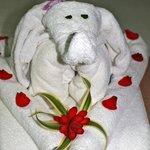 Towel Creature