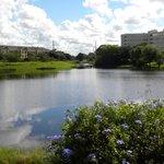 con vista a un lago y piscina...