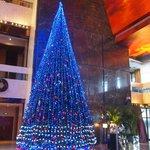Lobby in December