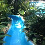 The slide located at the main pool area.