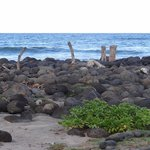 Rocks near the beach