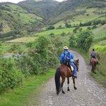 Horseback ride up the mountain