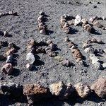 Silvestri Krateret
