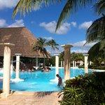 Magnifique piscine - Bar piscine