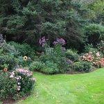 Garden near rooms