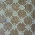 Stubborn dirty strain on the carpet upon arrival