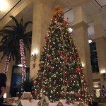Beautiful Christmas Tree in the lobby.