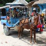 Transport! No Motorised vehicles allowed!!