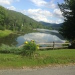 Summer Vermonting
