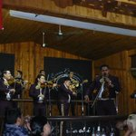 The Mariachi in full flow.