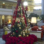 Christmas at Embassy Suites!