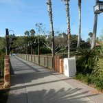 Bridge on Coronado Springs Grounds