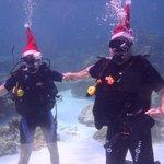 Nos cadeaux sous les eaux