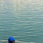 Сикхи омываются в озере вокруг храма. Кинжалы оставляют с собой - таковы правила.