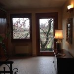 un albero di cachi occhieggia dalle finestre al piano