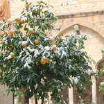 The snow in Bethlehem