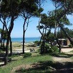La plage et le restaurant de plage