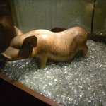 The Symbol Piggy