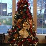 Angel Tree at Angel Inn, Branson