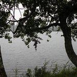 le lac se glisse entre les arbres