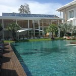 piscine / vue du côté cinnamon palm view