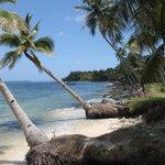 Daco Island