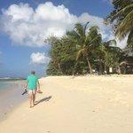 beach next to savannah … easy access to he sea