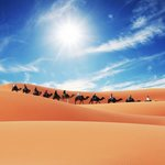 Trips in Morocco