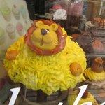 cake in window