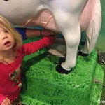 """""""Udderly"""" Fantastic. Cow milking station on the farm (third level)"""