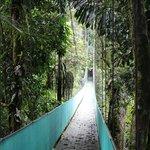 Foto de Arenal View Theme Park