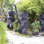 elephant statues by pool and spa building
