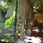 Courtyard Area