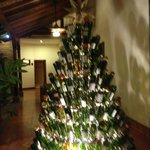 Garden area with wine bottle Christmas tree
