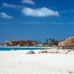 Divi Aruba, as seen from the Tamarijn