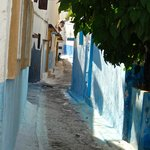 Blue and white neighborhood streets