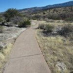 the paved path to the well