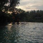Morning Swim in Paradise!