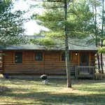 Back of the cabins
